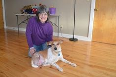 3-legged Tanner is up for adoption at Rolling Dog Farm in NH