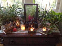 I have an area like this in my room :) except with a porcelain froggy meditating