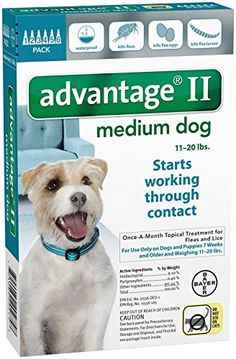 Advantage II Medium Dog 6-Pack Advantage https://www.amazon.com/dp/B00N8MD9HI/ref=cm_sw_r_pi_dp_x_5exeybSFCYAQR