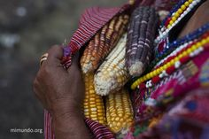 Oxlajuj B'ak'tun: Mayan Era Change - James Rodriguez, mimundo.org James Rodriguez, Documentary Photographers, Action, Change, Beautiful, Pictures, Group Action