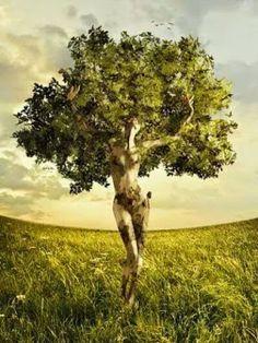 37 Trendy ideas for mother nature artwork trees earth Nature Artwork, Nature Drawing, Nature Paintings, Éphémères Vintage, Tree Woman, Tree Art, Tree Of Life, Mother Nature, Mother Earth