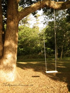 I want a swing in my backyard like this when I get my own house.<3