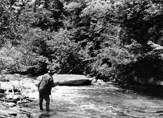 Pisgah National Forest Established, 1911 | This Day in North Carolina History