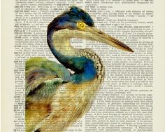 I like the idea of printing images onto book pages then framing or modgepodge