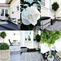 My front terrace Hydrangea, Terrace, The Outsiders, Diy Projects, Patio, Outdoor Decor, Instagram, Balcony, Hydrangeas