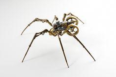 Image de spider and steampunk