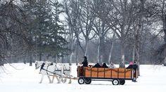 MERRY CHRISTMAS!!!  http://www.grandforksherald.com/news/local/3911473-over-fields-we-go-couple-offering-horse-drawn-wagon-rides-sense-nostalgia