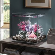 Shop a great selection of MCR LED Square Aquarium Tank biOrb. Find new offer and Similar products for MCR LED Square Aquarium Tank biOrb. Fish Tank Themes, Fish Tank Design, Cool Fish Tanks, Small Fish Tanks, Tropical Aquarium, Aquarium Led, Aquarium Craft, Wall Aquarium, Aquarium Design