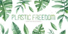 Welcome to my plastic free store giving amazing plastic free alternatives to beauty products, bathroom essentials & on the go. Organic Castor Oil, Organic Aloe Vera, Free Products, Beauty Products, Makeup Certification, Aleo Vera, Hair Washing, Lavender Tea, Bathroom Essentials