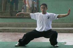 Tai Chi (taiji) Master Chen Ziqiang