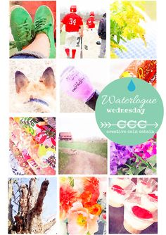 Waterlogue Wednesday ~ Come See a Collection of Photos Using the Waterlogue App ~ Every Wednesday