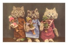 Dressed Kittens with Dolls Premium Poster