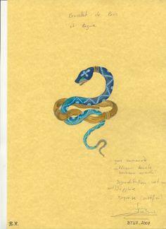Esquisse et Croquis - Boucheron - Bracelet Serpent - Or, émeraudes, Saphirs bleus et verts et Turquoises - Harumi Klossowska