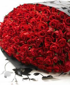 So many roses! | Flowers | Pinterest | Red, Red roses and Roses