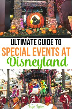 The ultimate guide to Disneyland's many special events, seasonal celebrations, and holiday festivals. Find out what is offered in Anaheim, California each season of the year to help pick the best time for a visit! Anaheim California, California Vacation, Disneyland California, Disney California Adventure, Disneyland Resort, Disney Vacation Club, Disney Cruise Line, Disney Vacations, Disney Travel