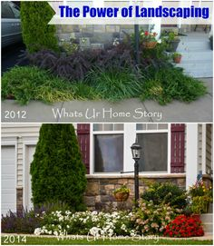 The power of landscaping -Mix in annuals with perennials for color and interest - www.whatsurhomestory.com