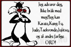 Jeg advarer deg ... Kung Fu, Karate, Humor, Character, Pictures, Humour, Funny Photos, Funny Humor, Comedy