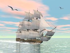 Old merchant ship sailing in the ocean with seagulls above Canvas Art - Elena DuvernayStocktrek Images x Color By Numbers, Paint By Number, Scenery Pictures, Art Pictures, Ocean Sailing, Paint Types, Poster Prints, Art Prints, Diamond Art