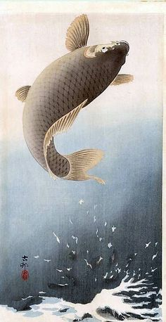 "Like the texture of waves / aspect could be used in either the Illustrations with the brush tool or Photoshop. Japanese Art Print ""Leaping Carp"" by Ohara Koson, woodblock print reproduction, fine art, asian art, Japanese Artwork, Japanese Painting, Japanese Prints, Chinese Painting, Art Koi, Fish Art, Japanese Illustration, Illustration Art, Botanical Illustration"