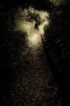 Shadow (Secret path)