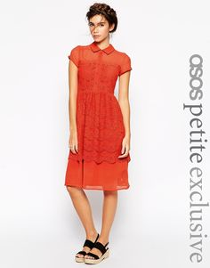 ASOS+PETITE+Midi+Shirt+Dress+with+Lace+Detail