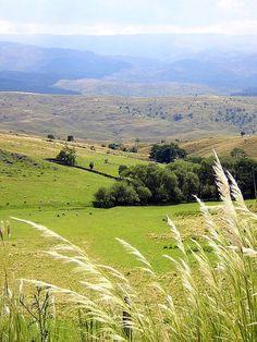 Valle de Punilla.