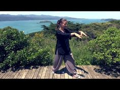 Tai Chi 5 Minutes a Day Module 01 - easy for beginners - YouTube