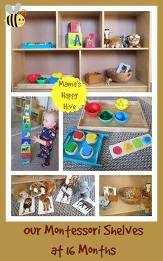 Toddler Montessori Shelves