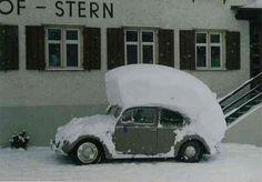 Punk´s not dead - VW Käfer Combi Wv, Punks Not Dead, Vw Vintage, Clean Memes, Vw Beetles, Vw Bus, Hot Cars, Funny Photos, Lol