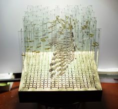Simply Creative: Anamorphic Rotating Glass Sculpture by Thomas Medicus