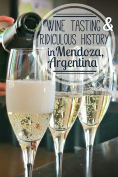 Wine tasting in Mendoza, Argentina with Mendoza Wine Camp: good wine, great food, and a ridiculous history lesson. The most exciting winery tour in Mendoza. Mendoza wine tasting is a must when visiting or traveling to Mendoza Argentina.