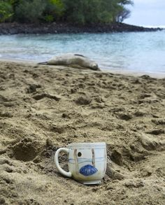 Follow along with this travelin' mug on my instagram @lauriecaffery.clay + under the hashtag #mugonholiday  http://www.etsy.com/shop/lauriecafferyclay Laurie Caffery Harris (@lauriecaffery.clay) • Instagram photos and videos
