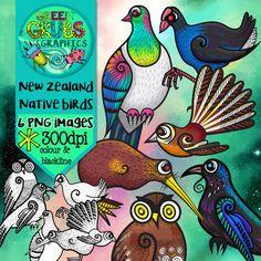 New Zealand Native Bird Clip Art Spring Painting, Garden Painting, Rock Painting, Tui Bird, Waitangi Day, Nz History, Doodle Images, New Zealand Art, Nz Art
