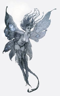 Fairy Picture (2d, fantasy, fairy)