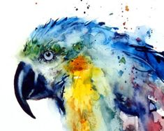 'Macaw' from an original watercolor painting by Dean Crouser. Available in a variety of products including matted prints, ceramic tiles, coasters and magnets, greeting cards and more. Watercolor Canvas, Watercolor Bird, Watercolor Animals, Watercolor Paintings, Fish Art, Bird Prints, Animal Paintings, Painting & Drawing, Illustration Art