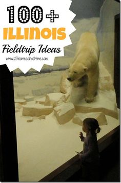 Homeschooling in Illinois: 100+  Illinois Field Trip Ideas great for homeschoolers or those planning a family vacation in Illinois.