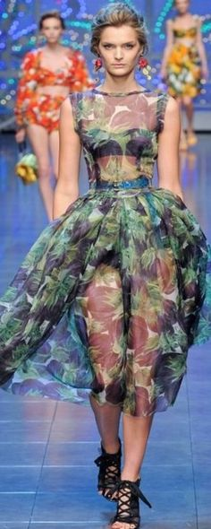 Dolce and Gabbana    The House of Beccaria