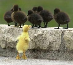 dont be boring, stand out!
