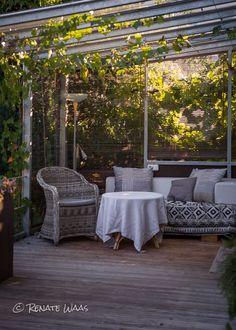 Die 27 Besten Bilder Von Garten Deck Gardens Und Flowers