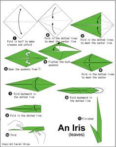origami iris 2