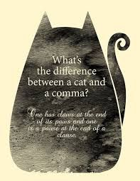 Cat and a comma