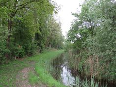 2014-04-27 Mooi wandelpad langs weide en bos nabij Middel