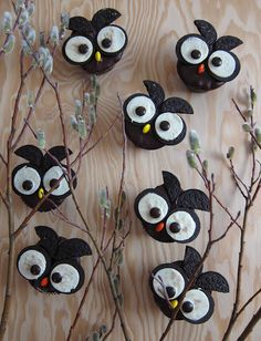 Whoooo wouldn't like these adorable owl cupcakes?