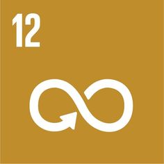 SDG 12: Responsible consumption, production | UNDP