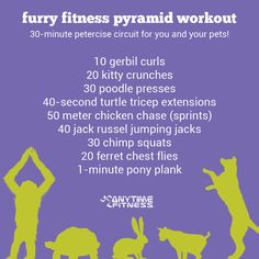 Furry Fitness Pyramid Workout: 30-Minute Petercise Circuit