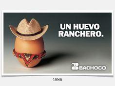 Para huevos, los huevos de Bachoco.