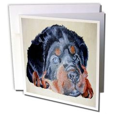 Taiche - Acrylic Painting - Rottweiler - Rottweiler Portrait - rottweiler, rottweilers, rottie, rotties, rottie owner, rottweiler puppy - 6 Greeting Cards with envelopes (gc_46884_1) 3dRose http://www.amazon.com/dp/B007ZSG0WC/ref=cm_sw_r_pi_dp_Yyimwb14AMJCP