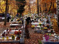 La Toussaint Exercice de compréhension orale sur la Toussaint et le Halloween en France. http://www.lawlessfrench.com/listening/toussaint/