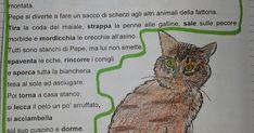 Una breve ripetizione di alcuni argomenti trattati quest'anno in italiano.  Buon ripasso!!!!                                                ... Primary Music