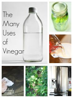 Vinegar is amazing! Cheap solutions for cleaning, laundry, beauty, and more.  Over 60 uses for vinegar to help you stick to a frugal budget all around the house!